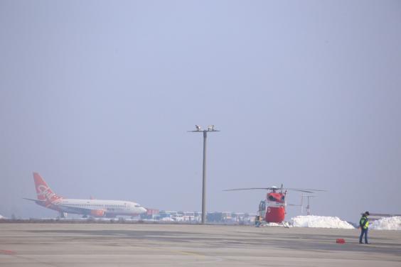 Колона автобусів з пасажирами літака з Уханя вирушила до Полтавської області