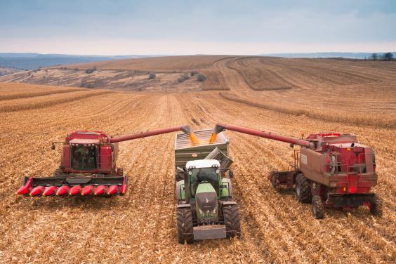 На Харківщині продовжується збирання врожаю пізніх сільськогосподарських культур